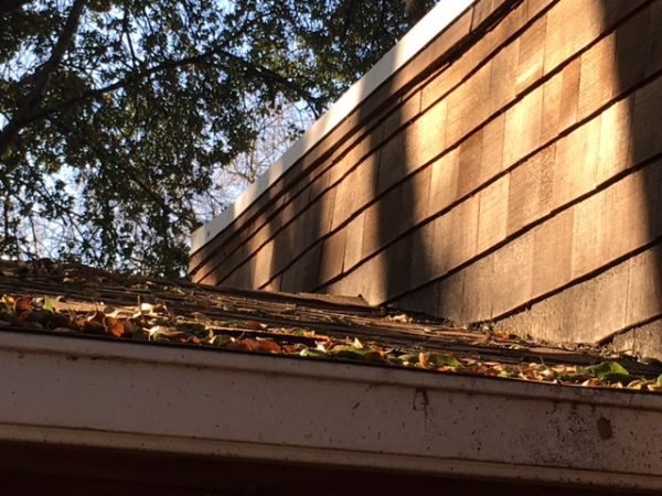 New roofing. The leaves are a warning for what caused the collapse the first time.